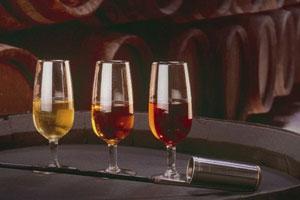 DOP Jerez sherry: tipos de uvas, vinos, bodegas y zona geográfica - vinos de España