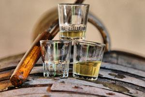 DOP Manzanilla: uvas, vinos, bodegas y marco geográfico - vinos de España