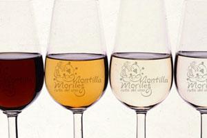 DOP Montilla Moriles: tipos de uvas, vinos, bodegas y zona geográfica - vinos de España