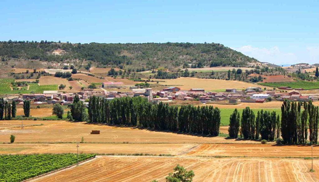Ruta del vino Ribera del Duero - enoturismo en Castilla León - vinos de España