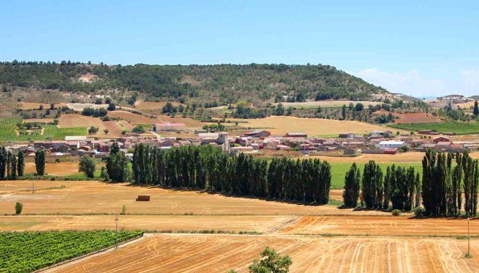 La ruta del vino de la Ribera del Duero, historia y sabores a tradición - enoturismo en España - vinos de España