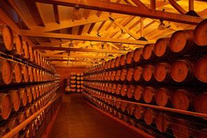 Denominacion de origen calificada La Rioja - vinos de La Rioja