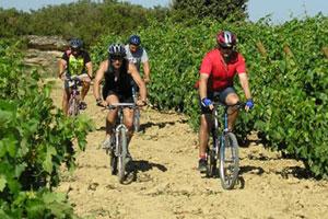 Ruta del vino de La Rioja - vinos de España