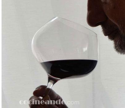 Qué es la rueda de los aromas del vino: fase olfativa de la cata de vinos