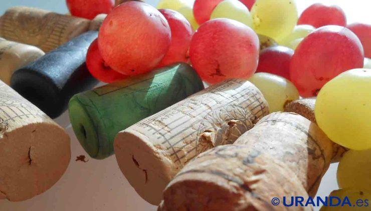 ¿Cuánto tiempo podemos guardar un vino? La vida útil de los vinos