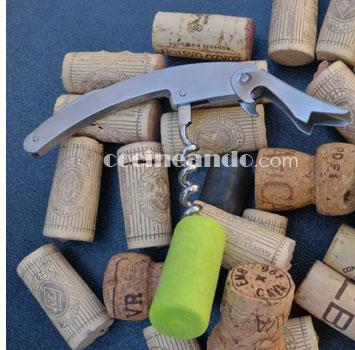 Qué son las denominaciones de origen de vinos de pago