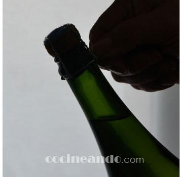 Vinos de Francia: Características de los vinos de Champagne