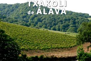 ruta del vino del txakoli de Álava - vinos de España - enoturismo en Euskadi o País vasco
