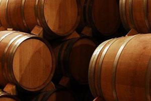 DOP Almansa: tipos de uvas, vinos, bodegas y zona geográfica - vinos de España