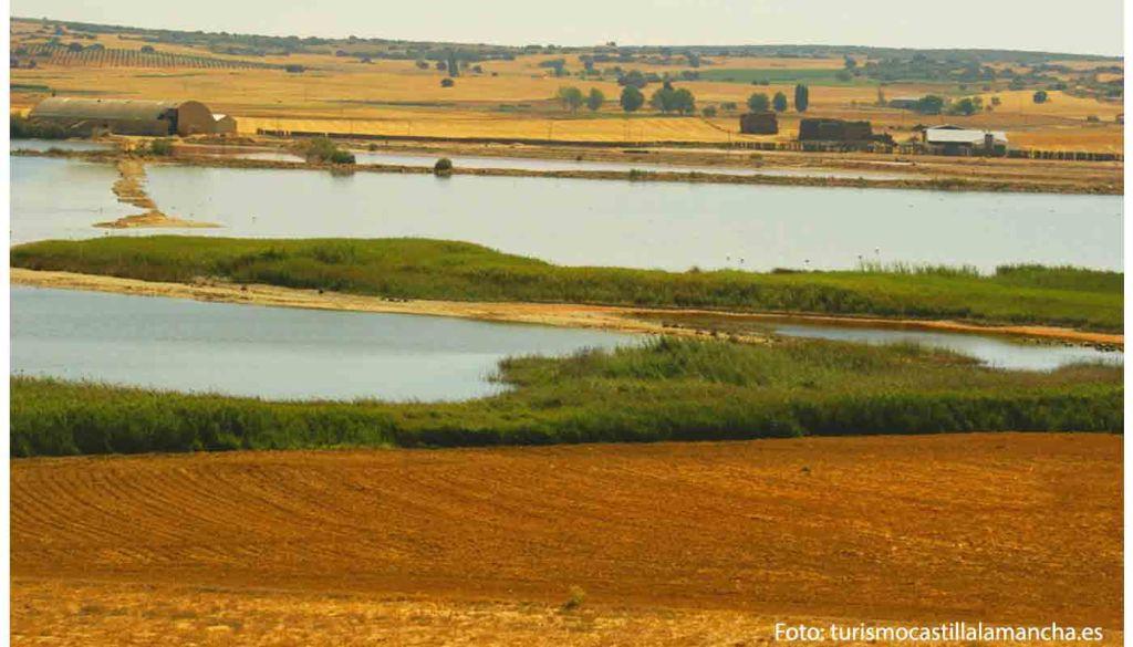 Ruta del vino de Almansa - enoturismo en Castilla La Mancha - vinos de España