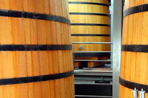 DOP Arlanza: tipos de uvas, vinos, bodegas y zona geográfica - vinos de España
