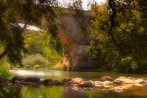 Ruta del vino de Arlanza - vinos de  España - enoturismo en Castilla Leon