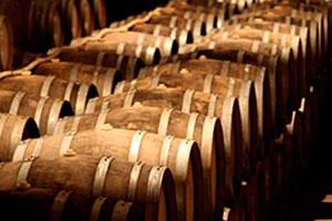DOP Arribes: tipos de uvas, vinos, bodegas y zona geográfica - vinos de España