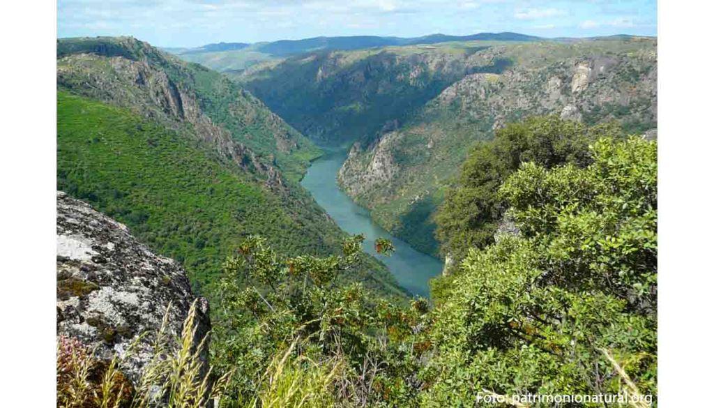 Ruta del vino de Arribes - enoturismo en Castilla León - vinos de España