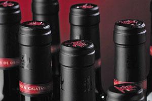 DOP Calatayud: tipos de uvas, vinos, bodegas y zona geográfica - vinos de España