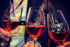 DOP Cigales: tipos de uvas, vinos, bodegas y zona geográfica - vinos de España