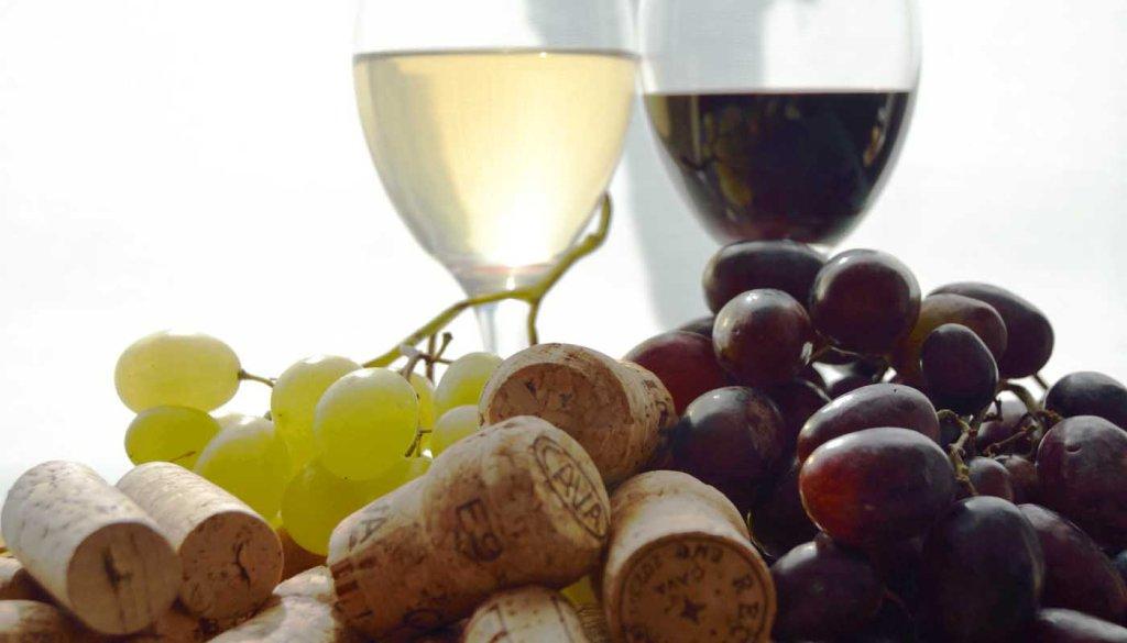 Cómo elegir un vino para cada momento - compra y eleccion de vinos