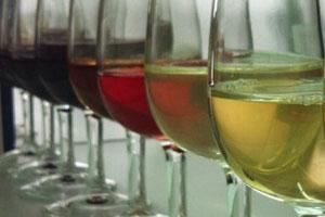 Denominación de origen de vinos Costers del Segre - vinos de España - vinos de Catalunya