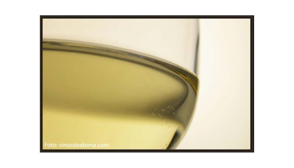 Denominación de origen Abona - vinos de España - vinos de las Islas Canarias