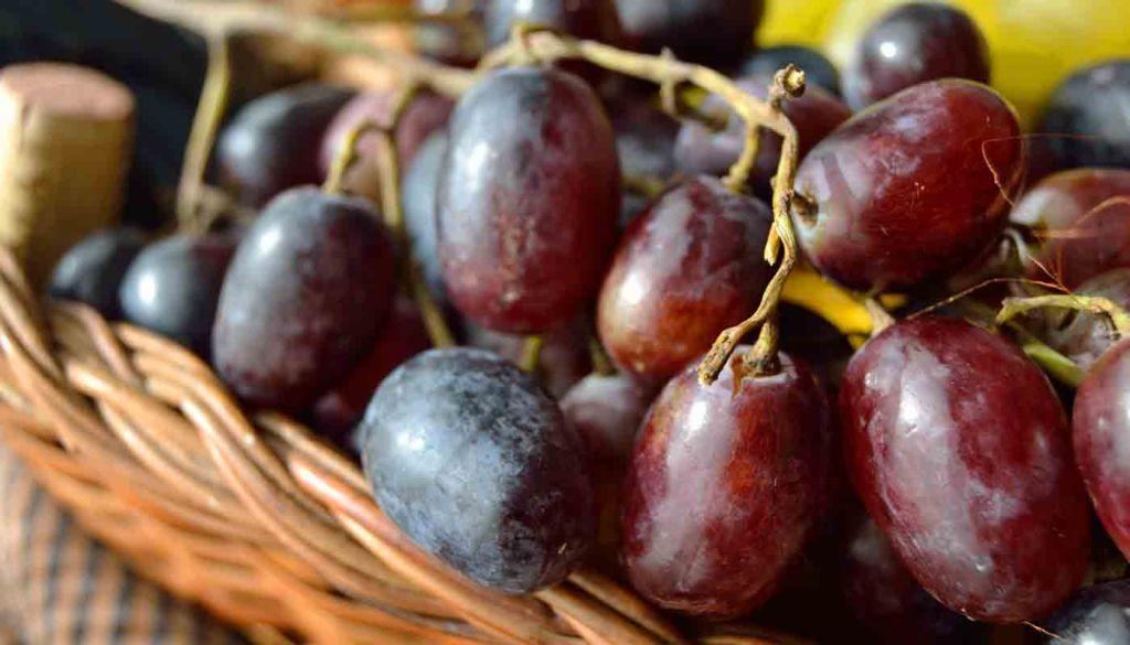 Denominacion de origen Arribes - vinos de España - vinos de Catilla Leon