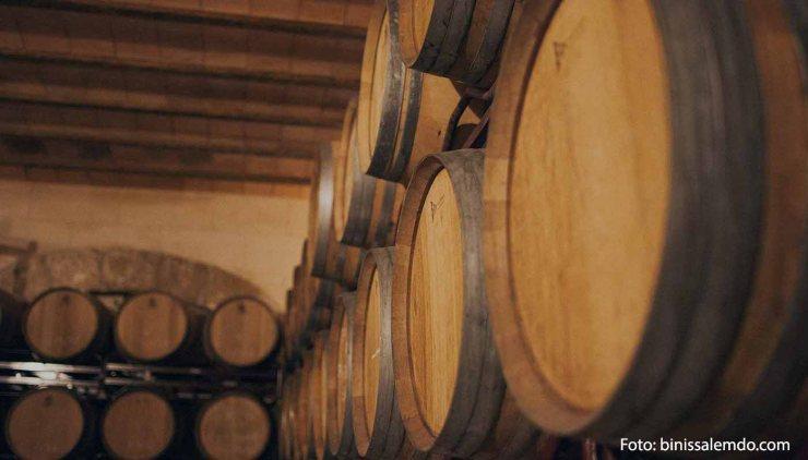 DOP Binissalem Mallorca: uvas, vinos, bodegas y marco geográfico - vinos de España - vinos de las Islas Baleares