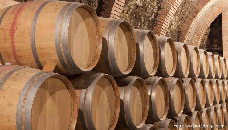 DOP Campo de Borja: uvas, vinos, bodegas y zona geográfica - vinos de España - vinos de Aragón