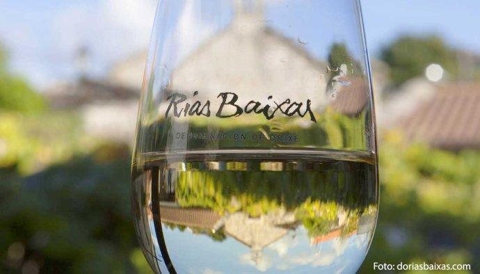 Denominación de origen Rías Baixas, tierra de albariño: uvas, vinos y marco geográfico - vinos de España - vinos de Galicia