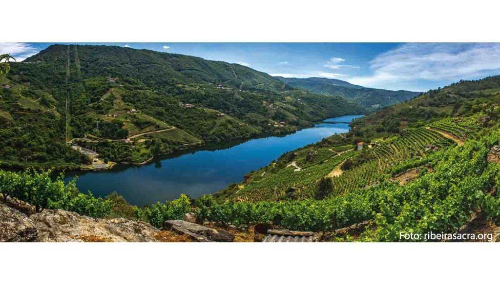Denominacion de origen Ribeira Sacra - vinos de España - vinos de Galicia