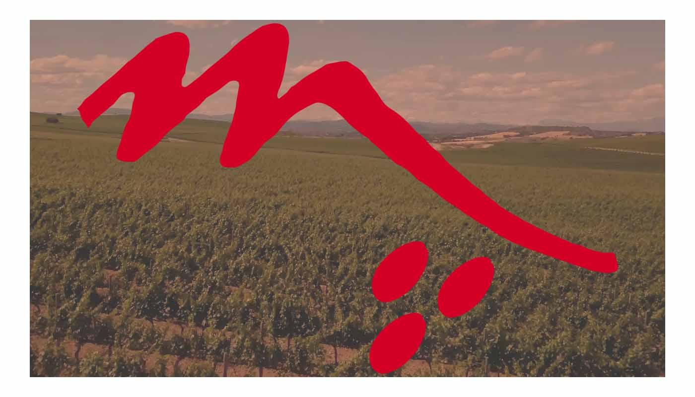 Denominación de origen Somontano, variedades de uvas y tipos de vinos - enoturismo