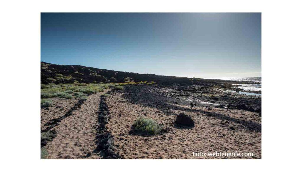DOP Valle de Güímar: uvas, vinos, bodegas y zona geográfica - vinos de España - vinos de las Islas Canarias