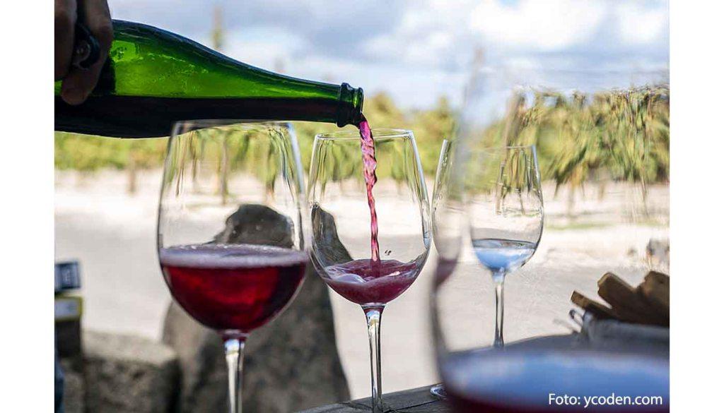 Denominación de origen Ycoden Daute Isora - vinos de España - vinos de las Islas Canarias