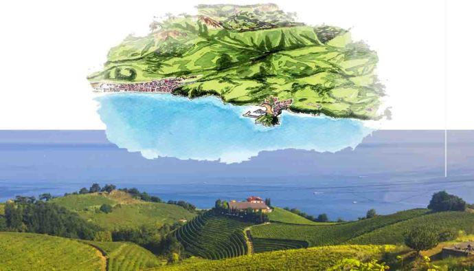 Ruta del vino Txacoli de Getaria, la fuerza de los paisajes cantábricos - rutas de vinos de España - enoturismo en Euskadi