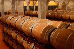 DOP Jumilla: tipos de uvas, vinos, bodegas y zona geográfica - vinos de España