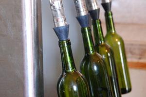 DOP La Gomera: tipos de uvas, vinos, bodegas y zona geográfica - vinos de España