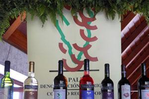 DOP La Palmera: tipos de uvas, vinos, bodegas y zona geográfica - vinos de España