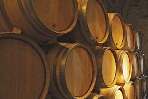 DOP Manchuela: tipos de uvas, vinos, bodegas y zona geográfica - vinos de España