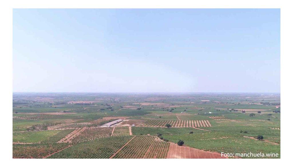 Ruta del vino de La Manchuela - enoturismo en Castilla La Mancha - vinos de España