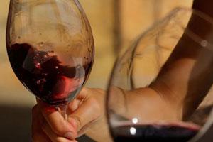 Denominación de origen de vinos Montsant - vinos de España - vinos de Catalunya