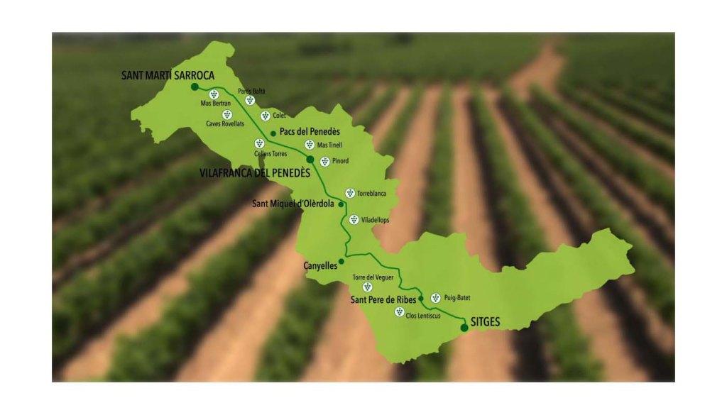 Ruta del vino del Penedès - vinos de España - enoturismo en Cataluña