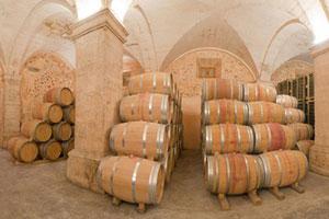 DOP Mallorca Pla i Llevant: uvas, vinos, bodegas y marco geográfico - vinos de España