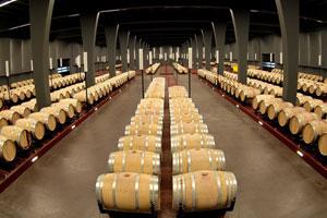 DOP Somontano: tipos de uvas, vinos, bodegas y zona geográfica - vinos de España