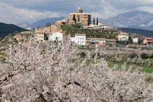 Ruta del vino de Somontano - vinos de España - enoturismo en Aragón