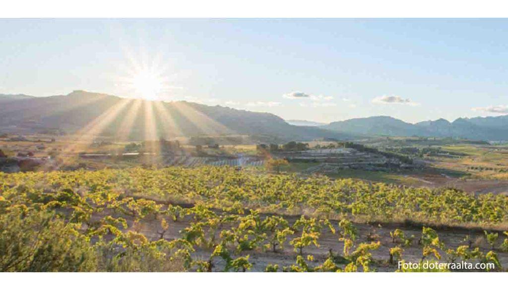 Ruta del vino Terra Alta - vinos de España - enoturismo en Catalunya