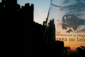Ruta del vino Tierra de Leon - vinos de España - enoturismo en Castilla Leon