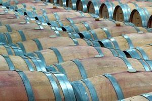 DOP Tierra de Zamora: tipos de uvas, vinos, bodegas y zona geográfica - vinos de España