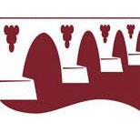 Denominación de origen de vinos Tierra del vino de Zamora - vinos de España - vinos de Castilla Leon