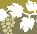 Denominacion de origen Valdeorras - vinos de España - vinos de Galicia