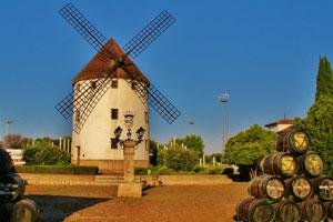 Ruta del vino de Valdepeñas - vinos de España - enoturismo en Castilla La Mancha