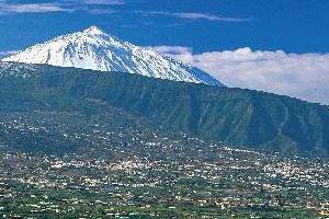 Ruta del vino de Tenerife: Valle de Orotava - vinos de España - enoturismo en las Islas Canarias