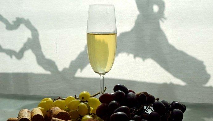 Vinos espumosos del mundo, variedades de uvas y elaboración